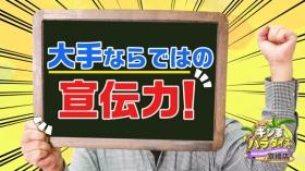 ギン妻パラダイス 京橋店の求人動画