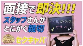 広島 ゴージャスの求人動画