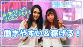 SHAMPOO(シャンプー)の求人動画