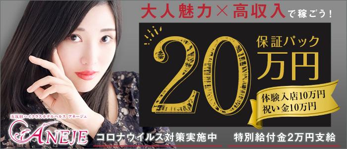五反田アネージュの体験入店求人画像