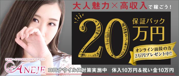 五反田アネージュ(ユメオトグループ)の体験入店求人画像