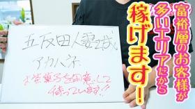 五反田人妻城の求人動画