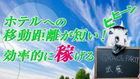 GRACE PARTY【グレイスパーティー】の求人動画