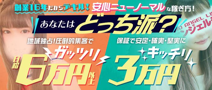八王子デリヘル 東京エンジェルラインの求人画像