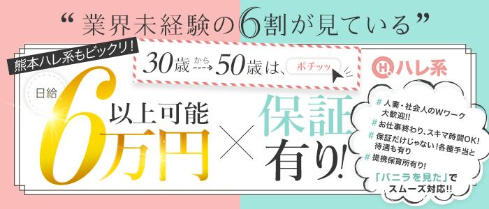 ハレ系(熊本)の求人画像