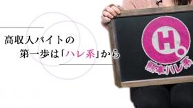 熊本ハレ系