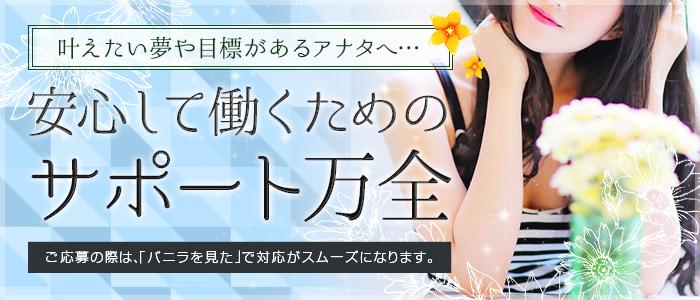 エッチなお姉さん倶楽部 盛岡店の求人画像