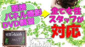 姫路ラビットのスタッフによるお仕事紹介動画