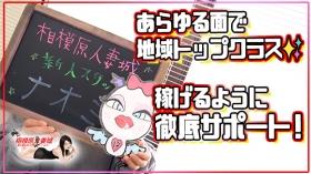 相模原人妻城のスタッフによるお仕事紹介動画