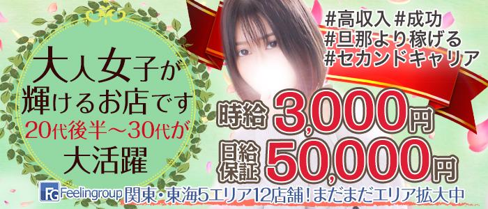 ほんとうの人妻 町田店(FG系列)の求人画像