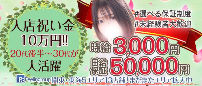 ほんとうの人妻 町田店の求人画像