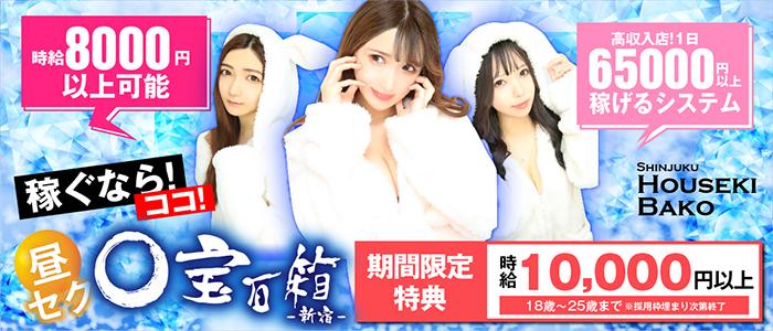 宝石箱 新宿店の体験入店求人画像