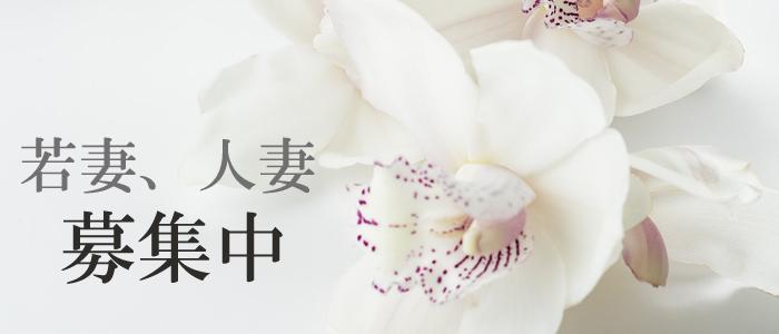 人妻・熟女・人妻collection