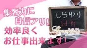 素人・人妻 SHIRAYURI(しらゆり)の求人動画