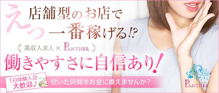 PANTHER(パンサー)の求人画像