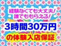 見るだけで1日体験入店30万円保証♪