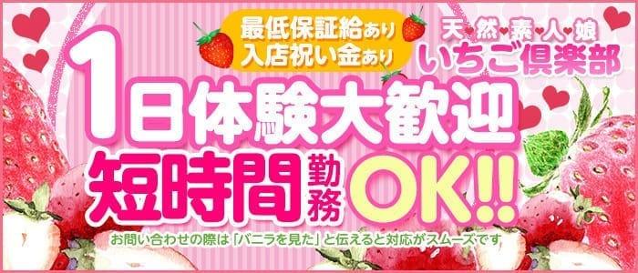 未経験・いちご倶楽部(周南・下松・熊毛・光)