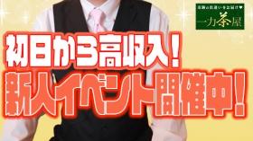 一力茶屋のバニキシャ(スタッフ)動画
