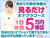 「見るだけオナクラコース」1日体験5万円保証でスタート!