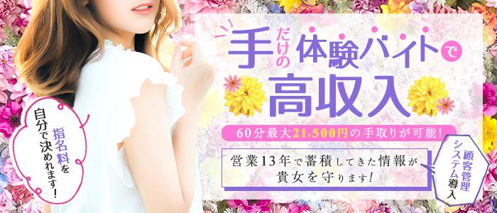 白姫クリニック 手コキ・オナクラの体験入店求人画像