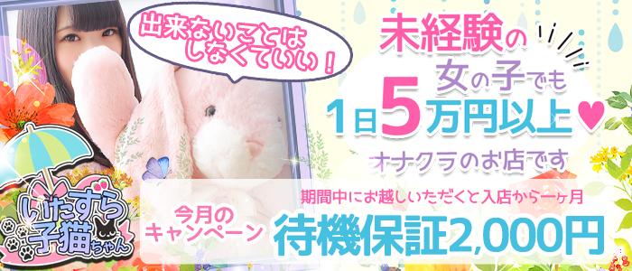 いたずら子猫ちゃん 天王寺店の求人画像