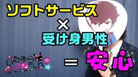いたずら子猫ちゃん 京橋店の求人動画