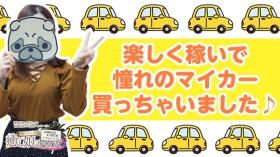 癒し娘診療所 土浦・つくば店の求人動画