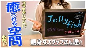 Jellyfish 銀座Roomに在籍する女の子のお仕事紹介動画