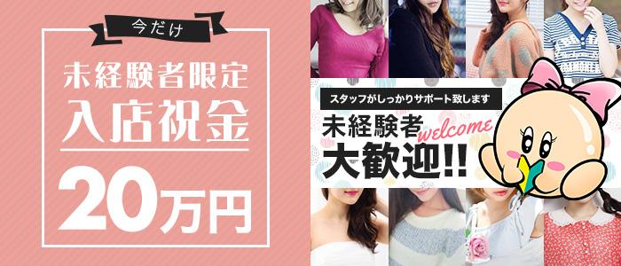 熟女ネットワーク京都(シグマグループ)の未経験求人画像