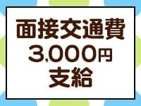 蒲田 ぽちゃカワ女子専門店!