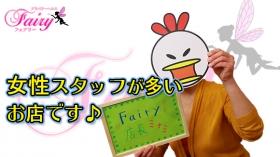 Fairyのバニキシャ(スタッフ)動画