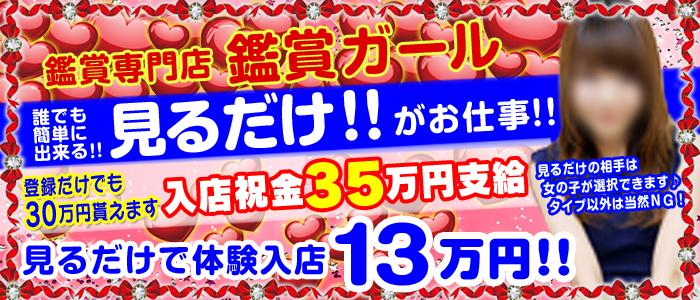 体験入店・鑑賞ガール