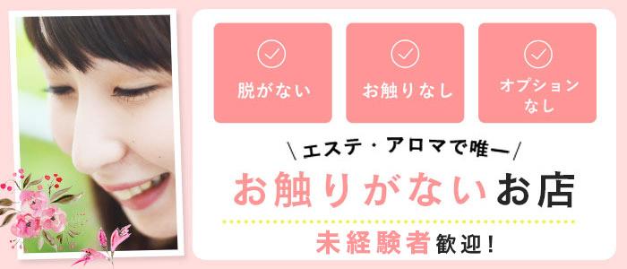 未経験・川崎回春性感マッサージ倶楽部