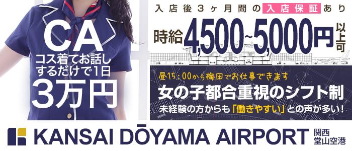 関西堂山空港(KANSAI DOUYAMA KUKOU)