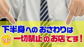 ひよこ治療院(熊本ハレ系)のスタッフによるお仕事紹介動画