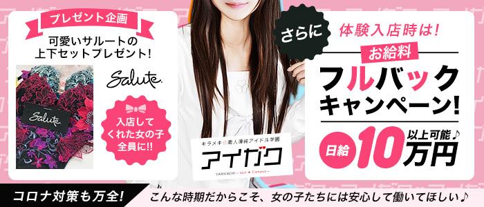 キラメキ☆素人清純アイドル学園の求人画像
