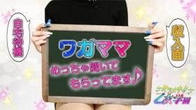 キラメキ!乙女学園の求人動画