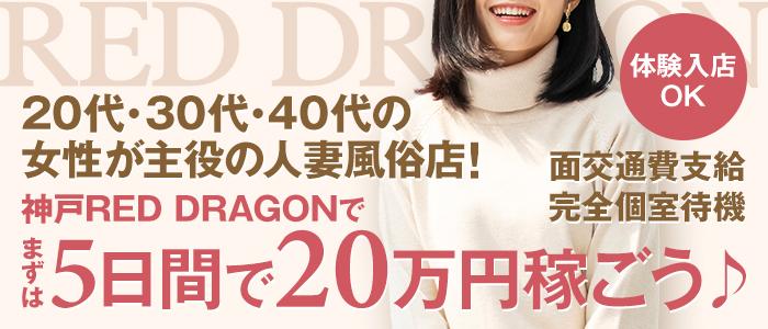 神戸レッドドラゴンの求人画像
