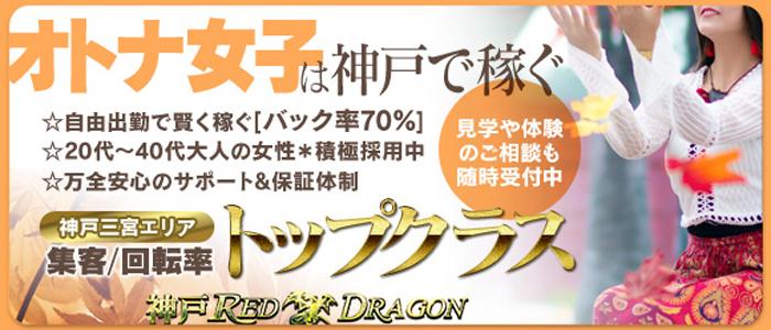 神戸レッドドラゴンの未経験求人画像