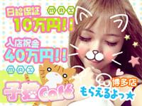 子猫カフェ 博多店
