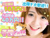 子猫カフェ 小倉店