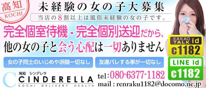 「高知」シンデレラの体験入店求人画像