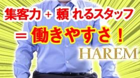 HAREMグループの求人動画