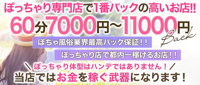 ムチムチ巨乳東京の求人画像