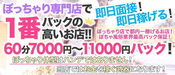 ムチムチ巨乳東京の体験入店求人画像