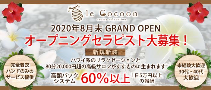 リラクゼーションサロン le Coconの求人画像