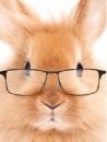 ラウンジMiMiの面接人画像