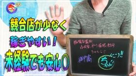 小田原早川箱根熱海ちゃんこの求人動画