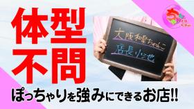 大阪和泉ちゃんこの求人動画