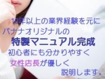 オリジナルマニュアル有!
